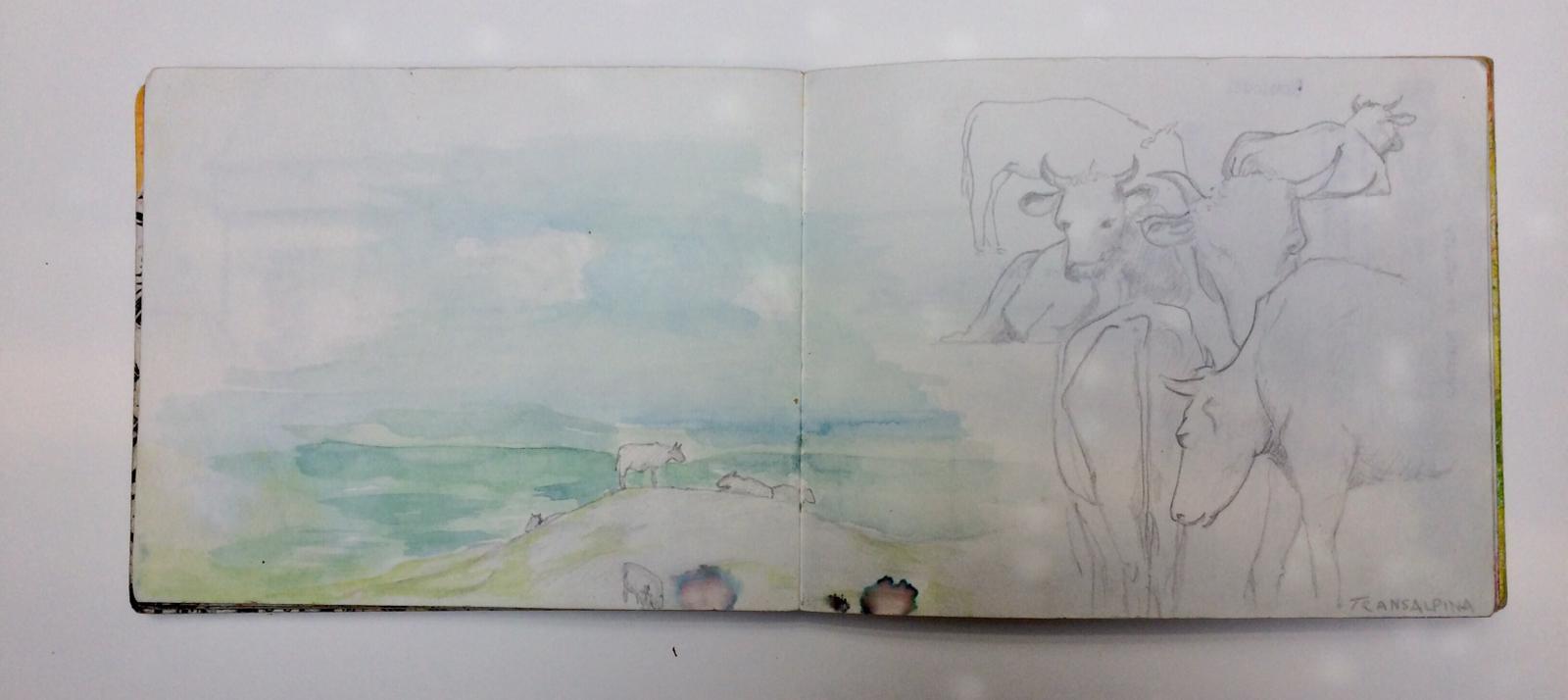 werkstatt-eden-lis-werner-illustration-skizzenbuch3