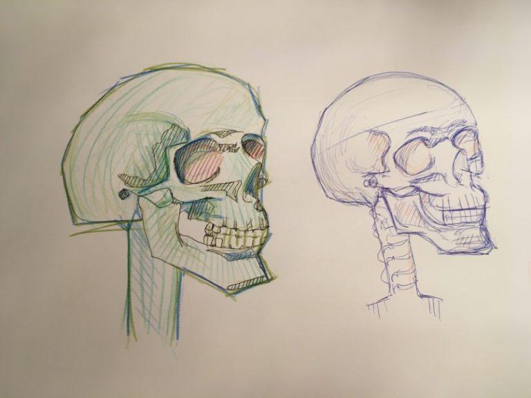 Skizze von zwei Schädeln