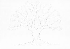 Familienstammbaum Entwurf