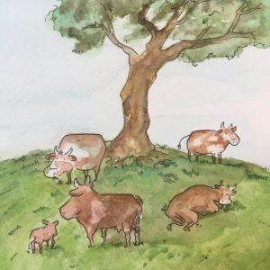 Kühe unterm Baum
